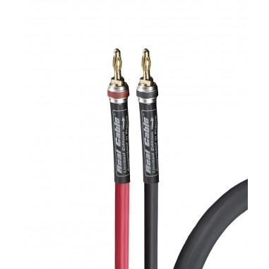 Câble HP monté Real Cable Chambord SP