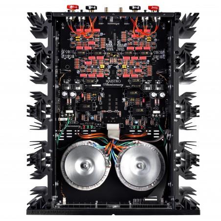Audio Analogue Maestro Anniversary vue interne