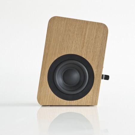 Boenicke Audio W5 SE woofer