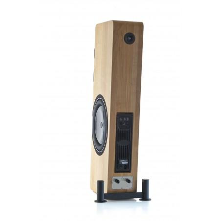 Boenicke Audio W13 SE arrière