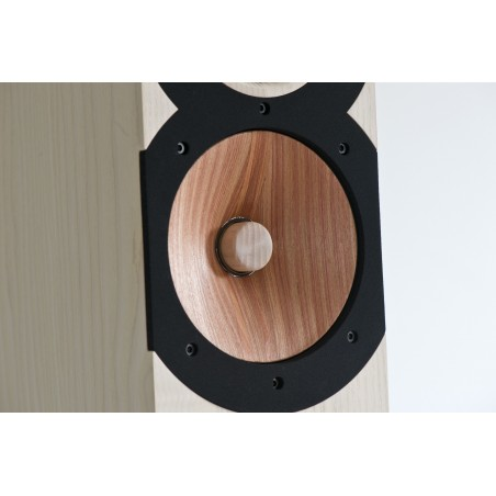 Boenicke Audio W13 SE+ haut-parleur